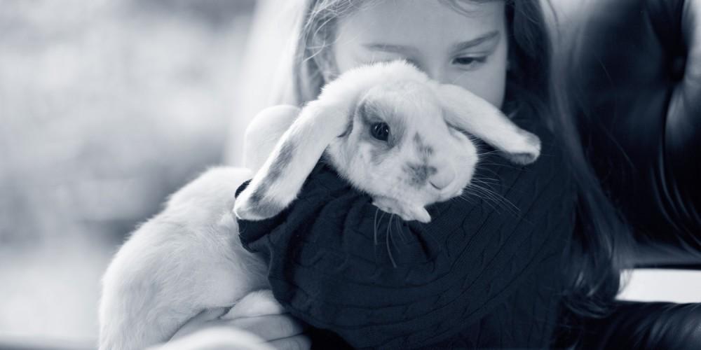 konijn maden