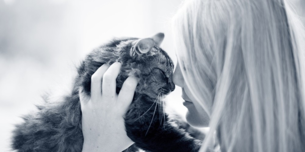 kat vrouw