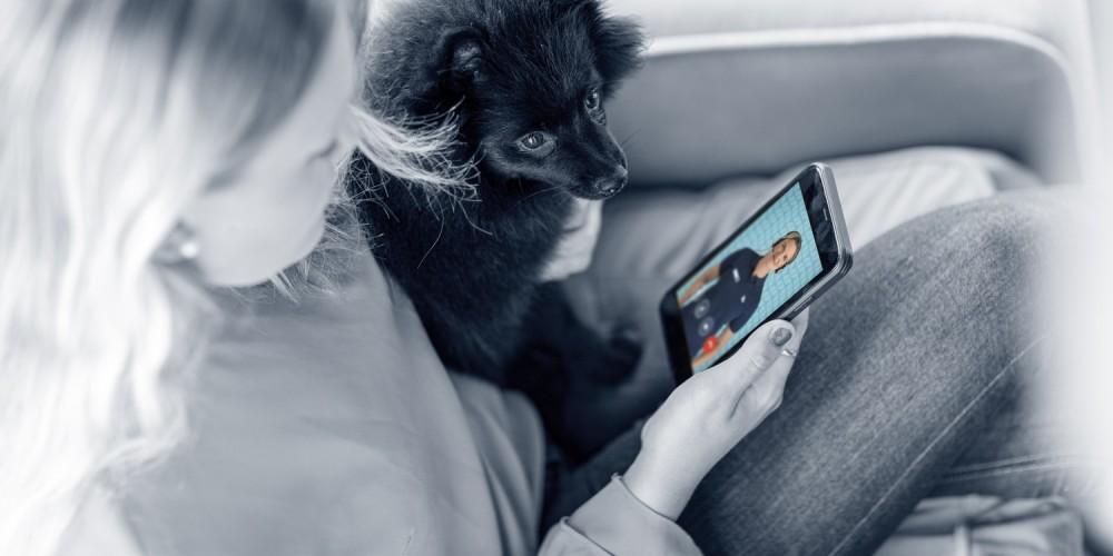 Videoafspraak dierenarts