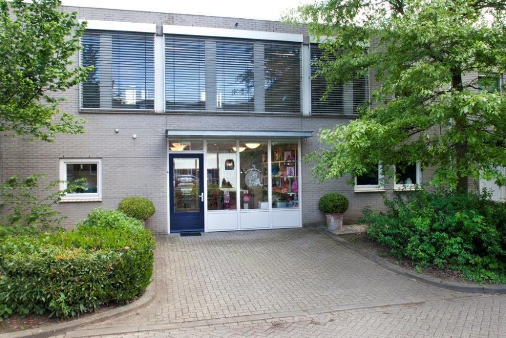 Kattenhotel Maastricht