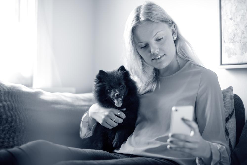 Treff våre veterinærer via mobilen!