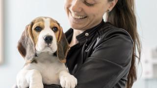 Tjekliste til din hundesitter