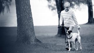 træn din hund til at gå pænt i snor