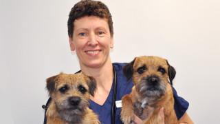 Veterinär Annekathrin med hundar