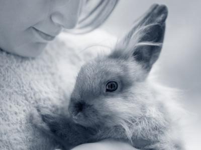 E.Cuniculi bij konijnen