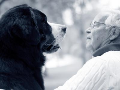 Hond met man
