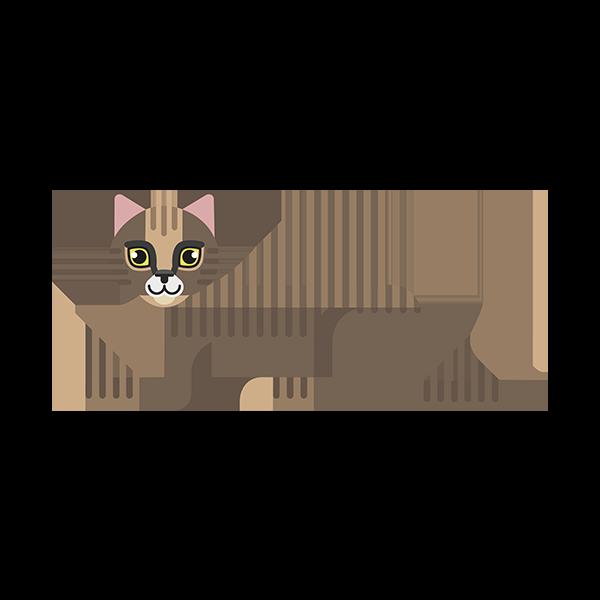 Europé kat