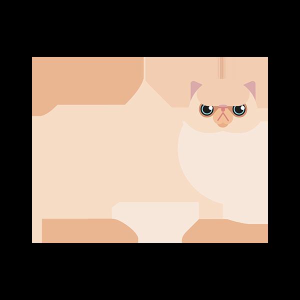 Perser kat