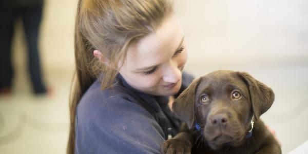 paraveterinair met puppy