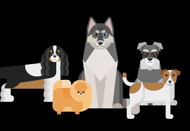 Alle hondenrassen