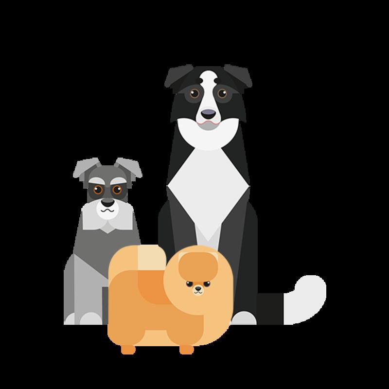 selector de razas de perro