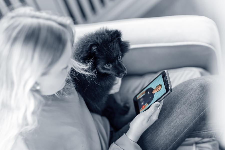 AniCura-appen dyrlæge konsultation
