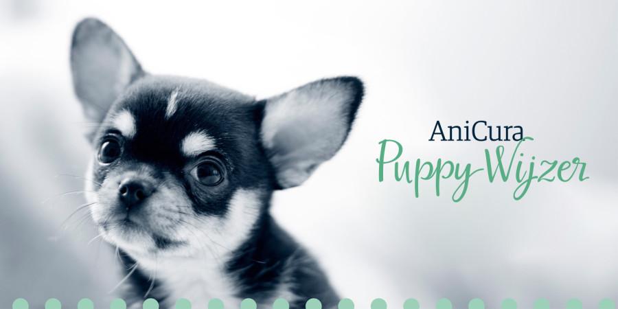 Puppy Wijzer