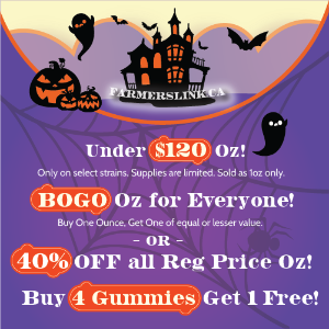 BUY 1 OZ, GET 1 OZ FREE OR 40% OFF (PLUS A BAG OF GUMMIES FOR ORDER $120+) 40%