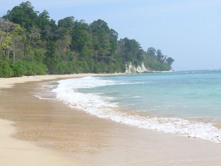 glass-bottom-boat-andaman-islands