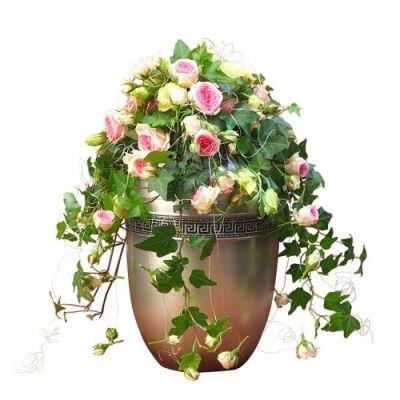 Hängender Urnenschmuck mit Rosen und Efeu