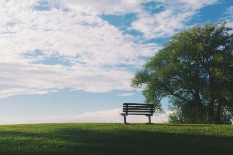 Fotographie einer Bank auf einer grünen Wiese.