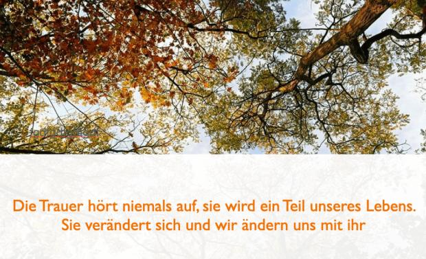 trauersprüche4.png