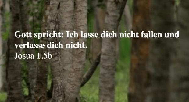 trauersprüche10.png