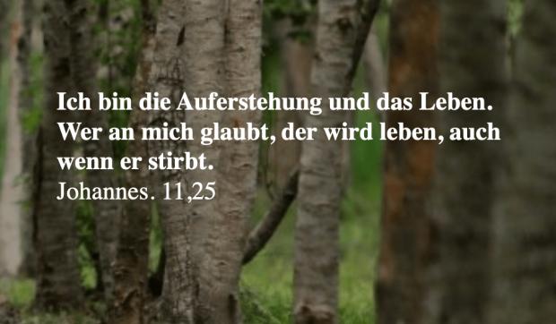 trauersprüche11.png