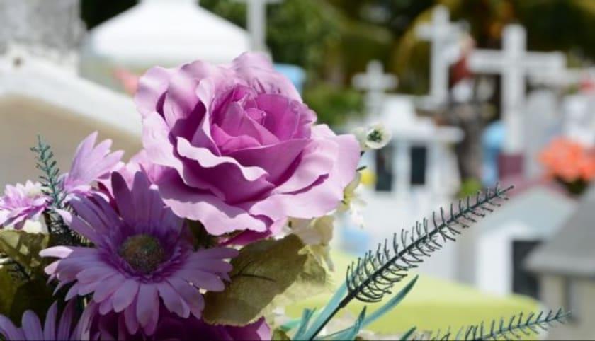 Blüten am Friedhof