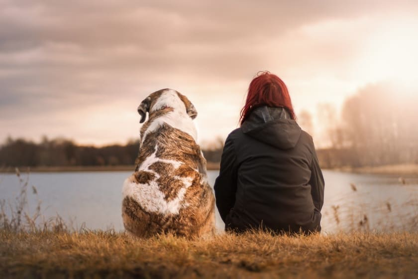 Hund und Besitzerin