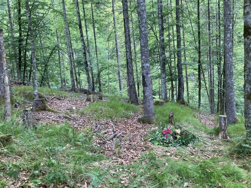 Waldbegräbnis II