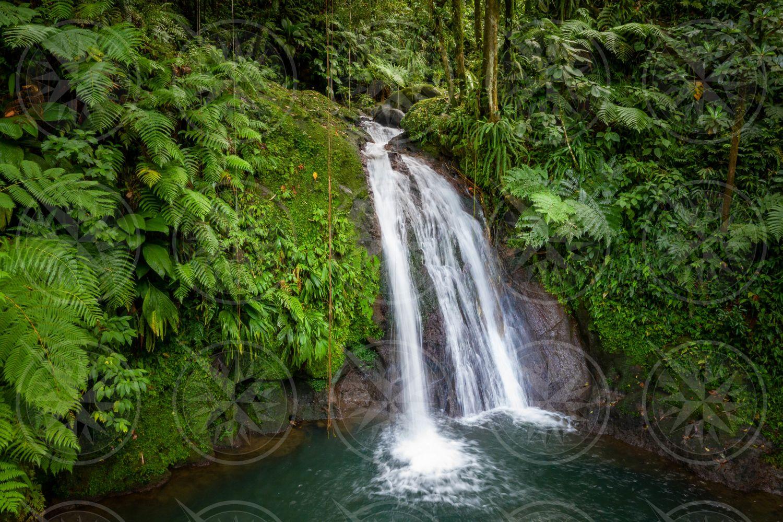 Cascade aux Écrevisses Waterfall, Guadeloupe