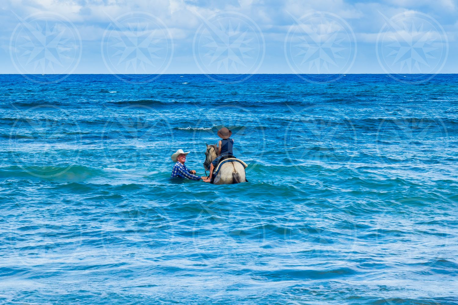 Horse in the water with boy