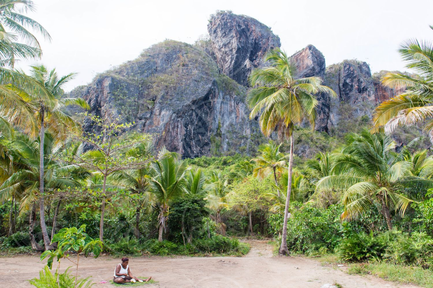 Woman sitting in front of coconut palm trees and rock formation