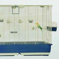 Marchioro Ester 82 gabbia uccellini canarini 82x51x62 cm