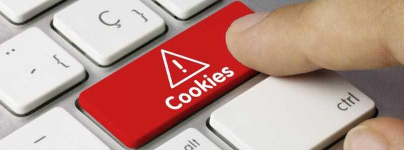 Cookies gestione informazioni scambiate con ElettroWebStore