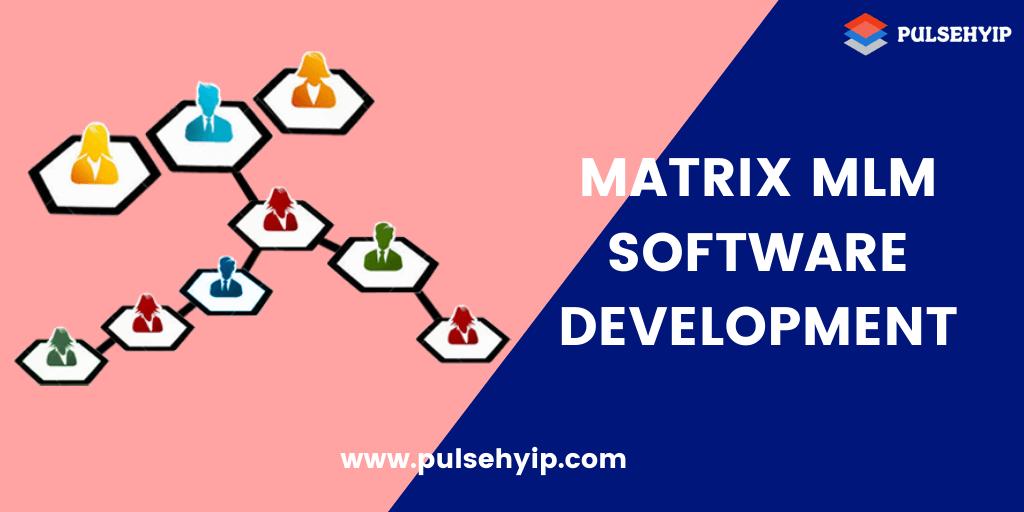 The Basics of Matrix Plan MLM Software Development