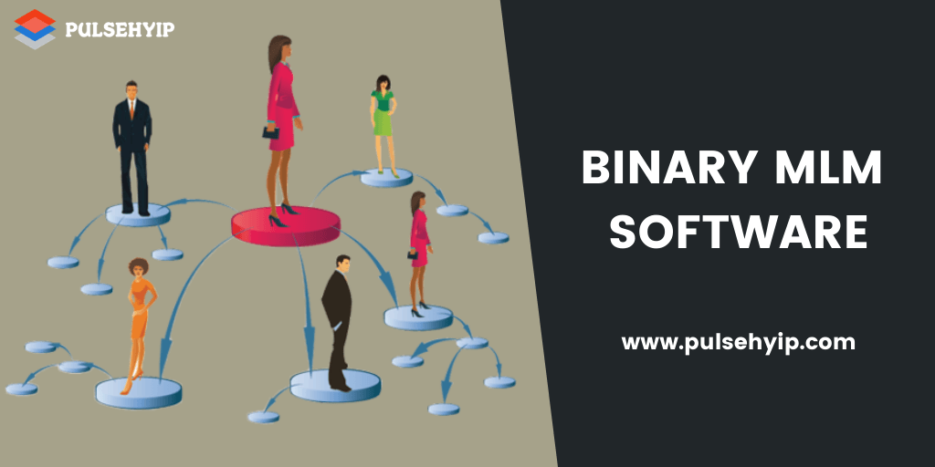 What is Binary MLM Software? - A Simple Guide to Gain Profit with MLM Business Platform