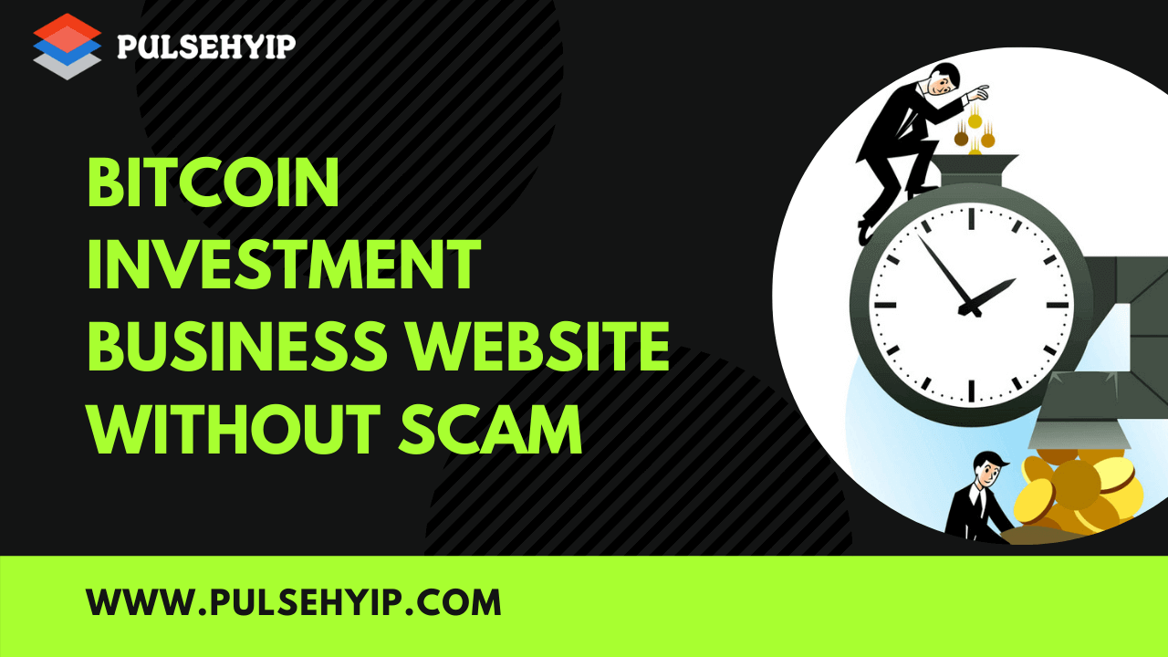 How to build a HYIP bitcoin investment business website without scam ?