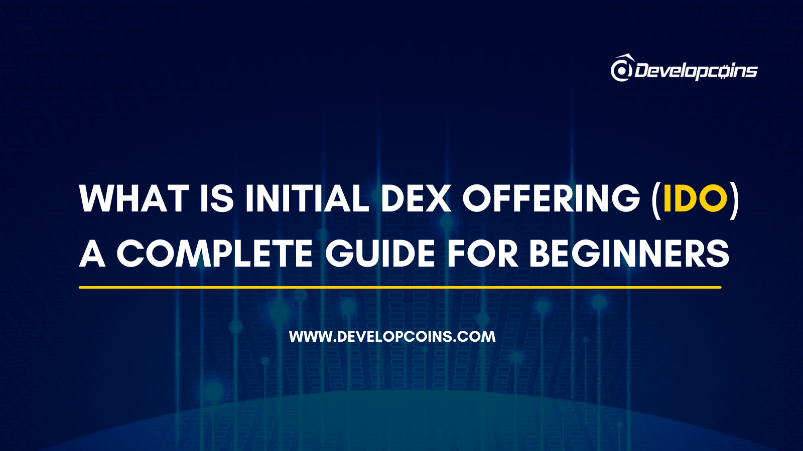 What is Initial DEX Offering (IDO)? A Complete Guide For Beginners