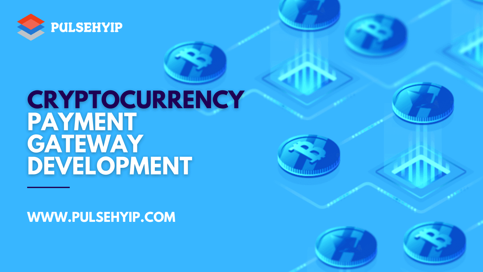 Cryptocurrency Payment Gateway Development Company for End to End Crypto Payment Gateway Solutions
