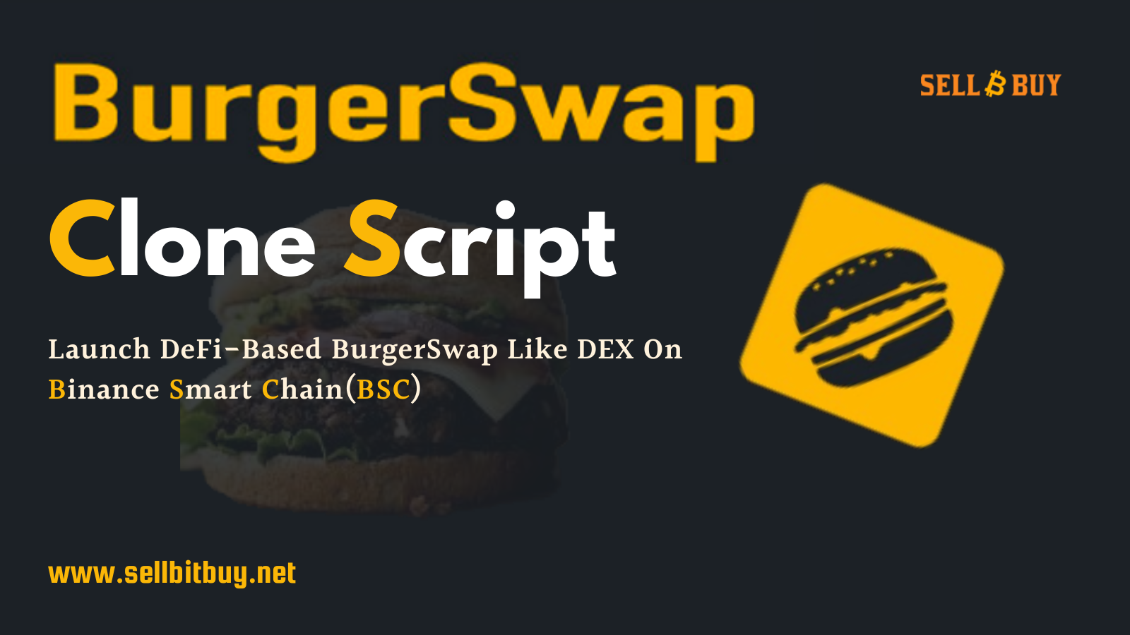 BurgerSwap Clone Script - Create DeFi DEX Like Burger Swap On Binance Smart Chain (BSC)