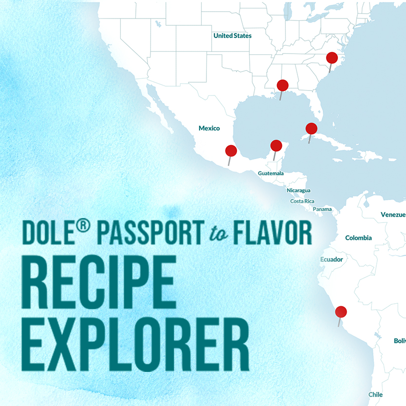Touts recipeexplorer