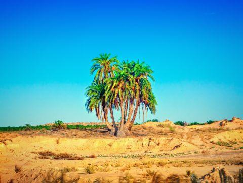 WEST SUB-SAHARAN