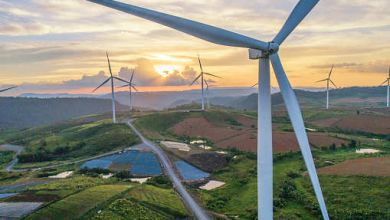 Photo of India's cultivable land has the highest potential for wind energy generation: NIWE