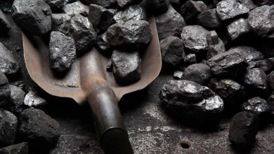 Photo of Coal India output in January rises 10.7 per cent