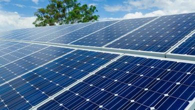 Photo of Enel to build first solar plant in India after winning tender