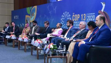 Photo of COP13: Environmental Impact Assessment for power lines not needed, says India