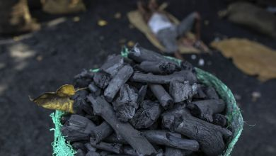 Photo of India's coal import rises 8% to 186 million tonnes in April-December