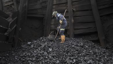 Photo of India gets no bids for two-fifths of coal mines up for auction