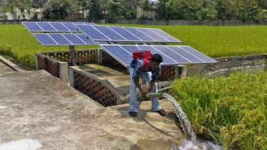 Photo of Punjab government way behind in installing solar water pumps