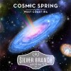 SILVER BRANCH COSMIC SPRING 6/4 16OZ CANS - 4 Pack