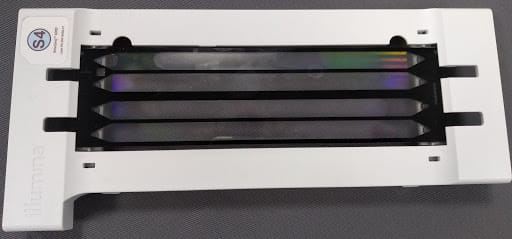 Figure 1: Illumina NovaSeq 6000 flow cell. By Cirosantilli2 - Own work, CC BY-SA 4.0, https://commons.wikimedia.org/w/index.php?curid=82876636