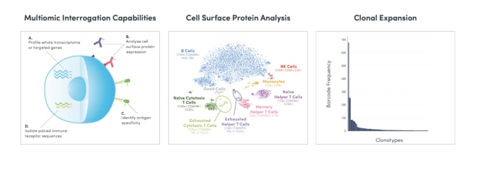 Leverage the power of DNA barcoding, single cell microfluidics, and next-generation sequencing to simultaneously profile a combination of cell surface markers, mRNA, full-length TCR/BCR sequences, and antigen specificity, all from the same single immune cells, at scale.